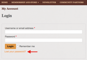 password-reset-3
