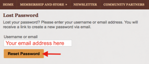 password-reset-4